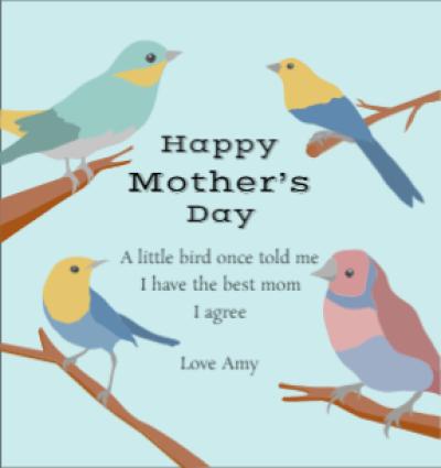 Mom's Little Bird